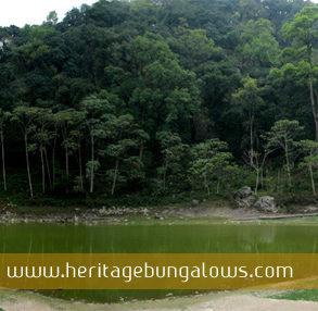 Yangyang Bungalow